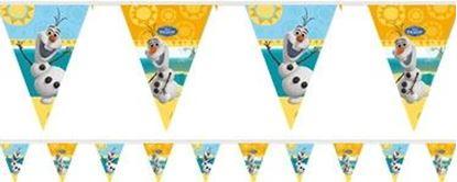 Afbeeldingen van Olaf vlaggenlijn