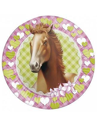 Afbeeldingen van Bordjes Paarden