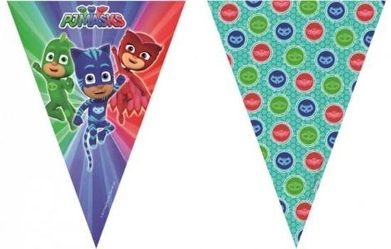 Afbeelding van PJ Masks vlaggenlijn 2 meter